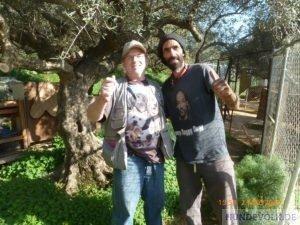 Norman und Nikos